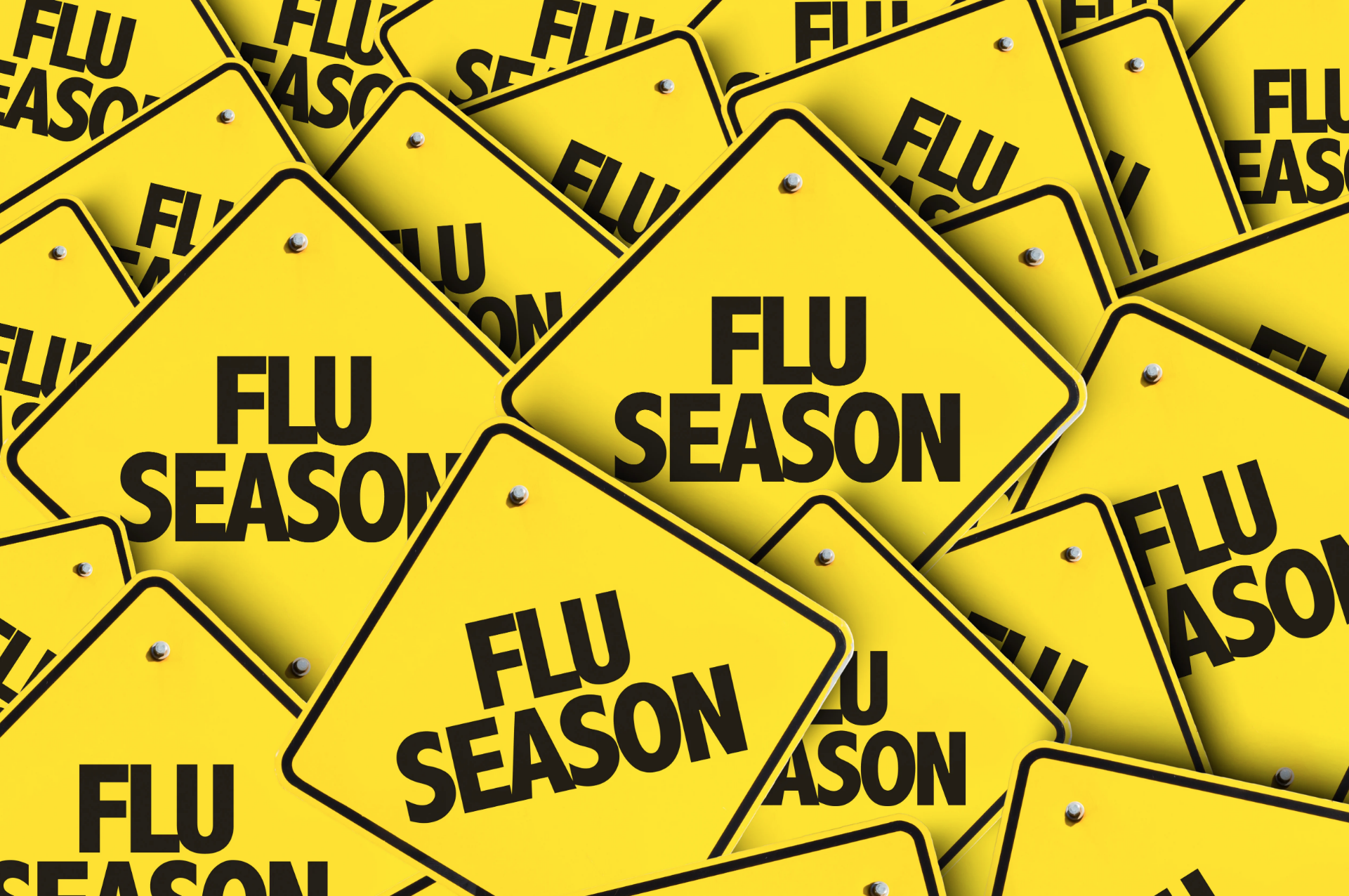 The Flu & You